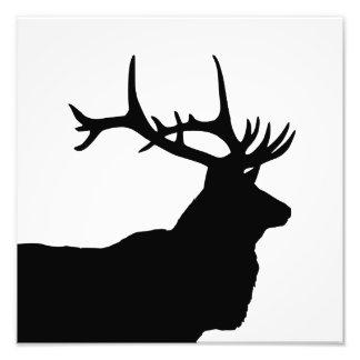 Elk Head Silhouette Art Photo
