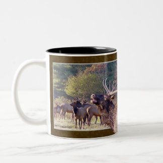 Elk Herd Mug