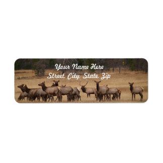 Elk Herd  Return Address Sticker