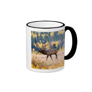 Elk in Rocky Mountain National Park, Colorado Ringer Mug
