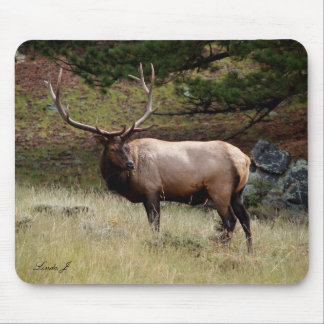 Elk in the Wild Mousepad