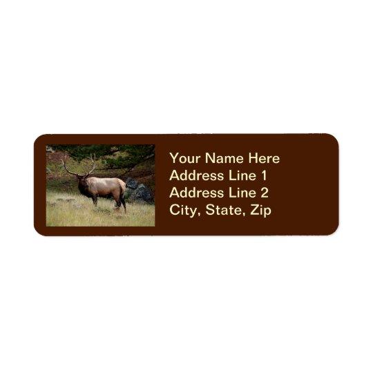 Elk in the Wild Return Address Label