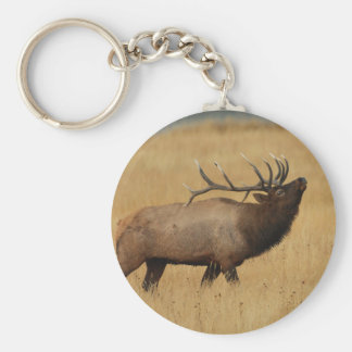elk key ring