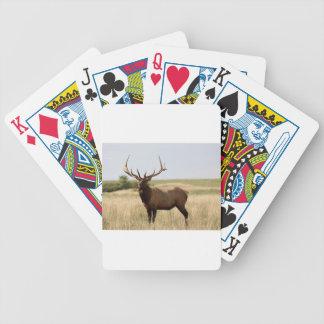Elk on Canadian Prairies Bicycle Playing Cards