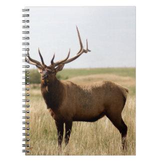 Elk on Canadian Prairies Notebooks