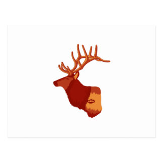 Elk Profile Postcard