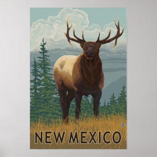Elk SceneNew Mexico Poster