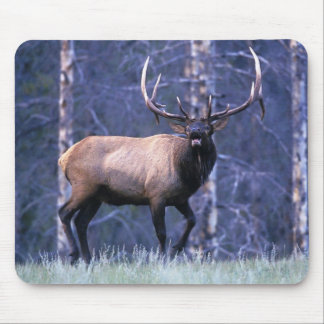 Elk Scream Mouse Pad