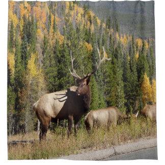 Elk Shower Curtian Shower Curtain