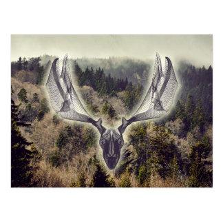 Elk skull postcard