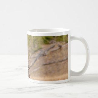 Elks Mugs