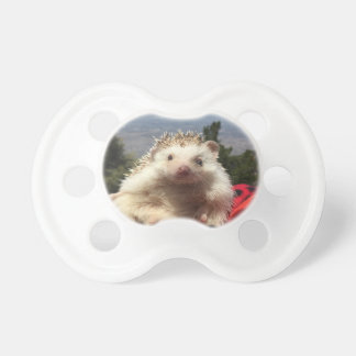 elliot the hedgehog pacifier