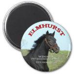 Elmhurst - '97 Breeders' Cup Sprint Winner 6 Cm Round Magnet