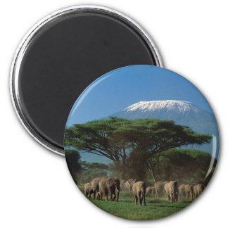 Elphants of Mt.Kilimanjaro 6 Cm Round Magnet