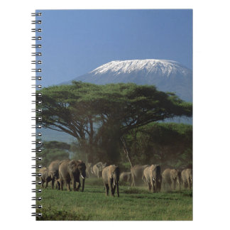 Elphants of Mt.Kilimanjaro Notebook