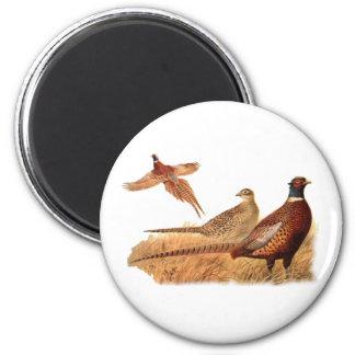 Elusive Pheasant Bird Hunting 6 Cm Round Magnet