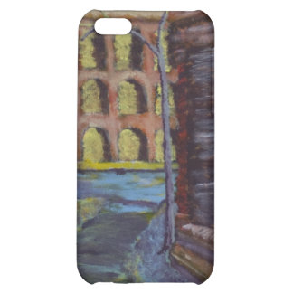 Elysian Fields Cover For iPhone 5C