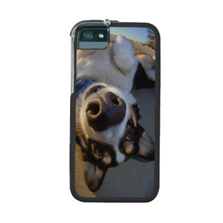 Embarrassing Moment iPhone 5/5S Cases