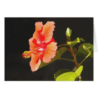 Embossed Red Hibiscus, Brenda's Flower Card