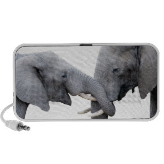 Embracing elephants showing love and friendship iPod speaker