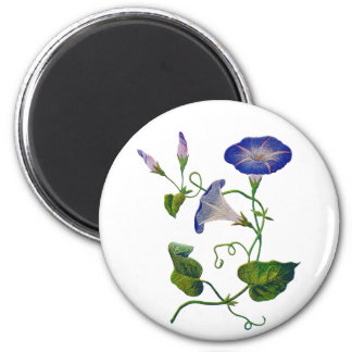 Embroidered Blue Morning Glories 6 Cm Round Magnet