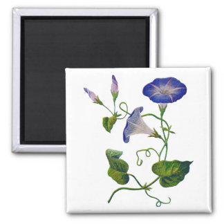 Embroidered Blue Morning Glories Square Magnet