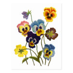 Embroidered Parade of Pansies