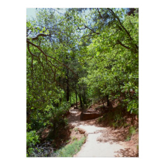 Emerald Pool Trail- Zion National Park Poster