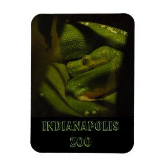 Emerald Tree Boa Indy Zoo Photo Rectangular Photo Magnet