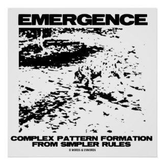 Emergence Complex Pattern Formation From Simpler Poster
