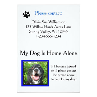 Emergency Pet (Dog) Care Wallet Card