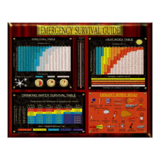 EMERGENCY SURVIVAL GUIDE POSTER