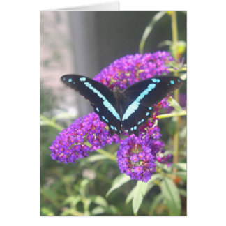 Emerging Butterfly Sister Birthday Card