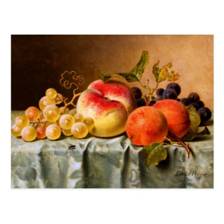 Emilie Preyer: Fruits with Fly Postcard