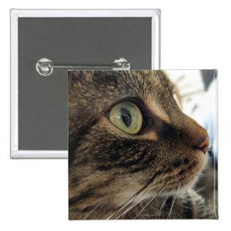 Emma Close-Up Cat Photo Square Button