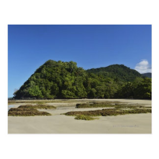 Emmagen Beach, Daintree National Park (UNESCO 2 Postcard