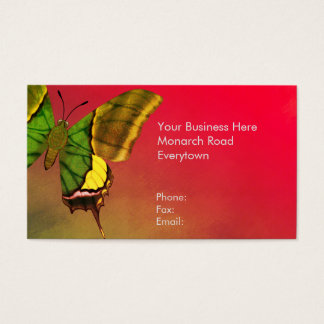 Emperor of India Butterfly Business Card