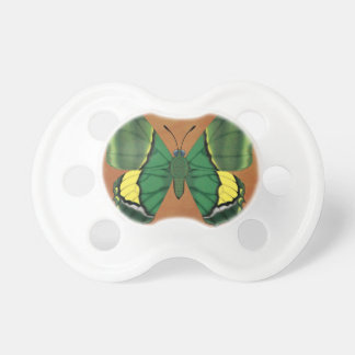 Emperor of India Butterfly Dummy