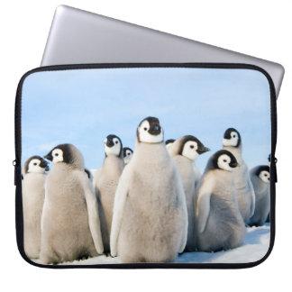 Emperor Penguin Chicks - laptop case Computer Sleeves