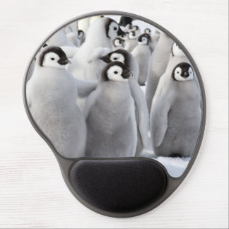 Emperor penguin Chicks - mouse pad