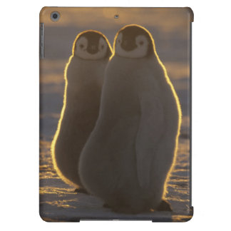 Emperor Penguins, Aptenodytes forsteri), 2 Cover For iPad Air