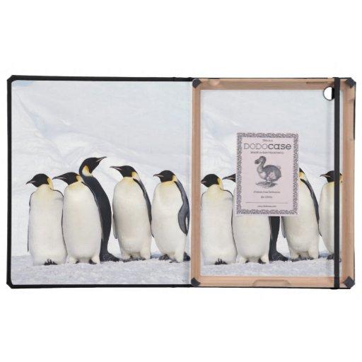 Emperor Penguins iPad Cases