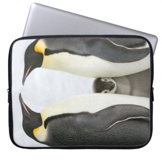 Emperor Penguins with Chick - laptop case