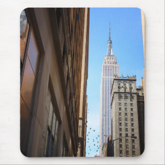 Empire State Building and Birds, New York City Mouse Pad
