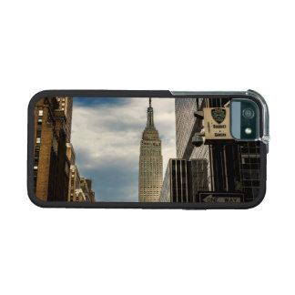 Empire State Building iPhone 5/5S Cases