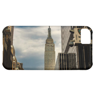Empire State Building Cover For iPhone 5C
