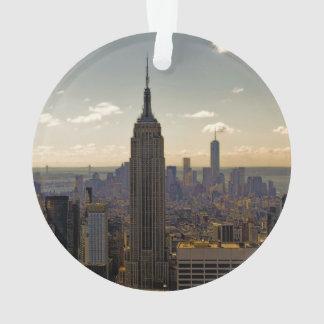 Empire State Building Landscape