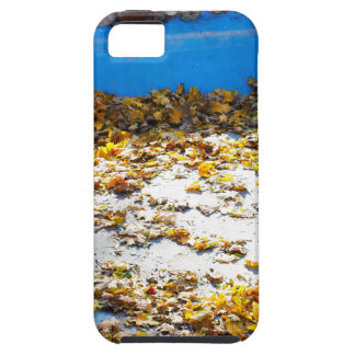 Empty and dry the artificial pond in the park tough iPhone 5 case