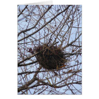 Empty Nest Card