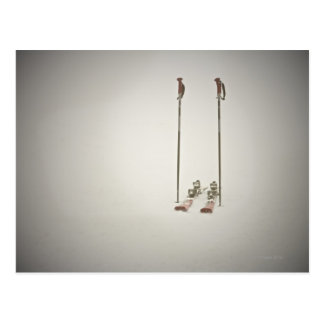 Empty Skis and Poles Postcard